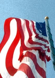 Grainy photo of Flag